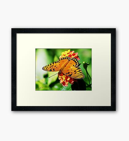 Grand Beauty Framed Print