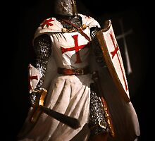 Maltese Knight by Ronald cox