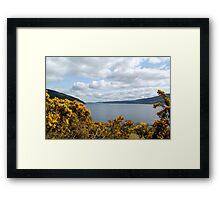 Golden Flowers of Loch Ness Framed Print