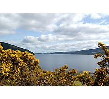 Golden Flowers of Loch Ness Photographic Print
