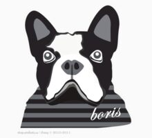 boris 1 by artefacts