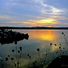 Sunset at Bass Lake, Manitoulin Island by Wendy  Meder