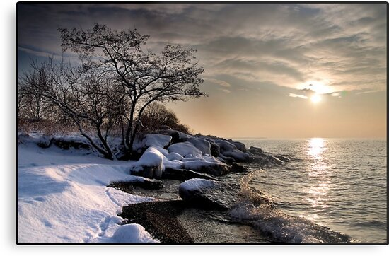 Winter morning on Lake Ontario, Toronto Canada by Eros Fiacconi (Sooboy)
