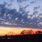 Sunrise over the Marsh by bozette