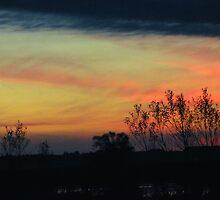 Sunrise 2 by bozette