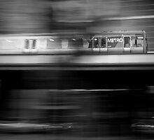 Fast Pace by Luisa Cavallaro