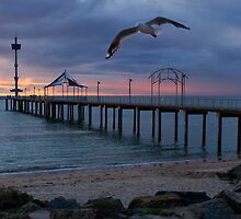 Brighton Jetty by Luisa Cavallaro