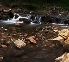Morialta, South Australia by Luisa Cavallaro