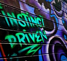 Instinct Driven by Luisa Cavallaro
