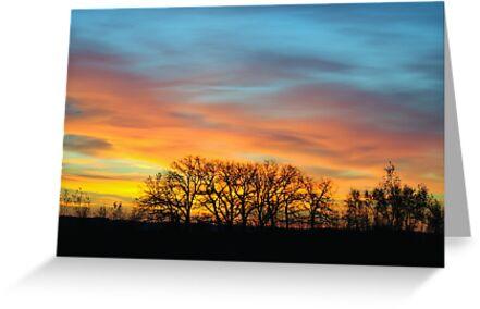 Sunrise 7 by bozette