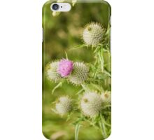 Borrowdale Thistle iPhone Case/Skin
