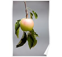 The Little Apple Poster