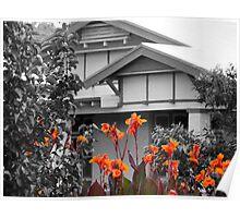 A little garden colour Poster