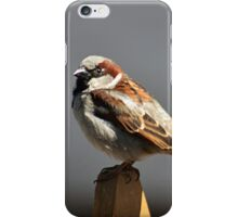 House sparrow sits on a picket fence iPhone Case/Skin