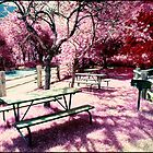 Infrared Picnic by Mike Lewis