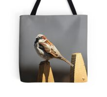 House sparrow sits on a picket fence Tote Bag