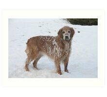 Snowy Winnie Dog Art Print