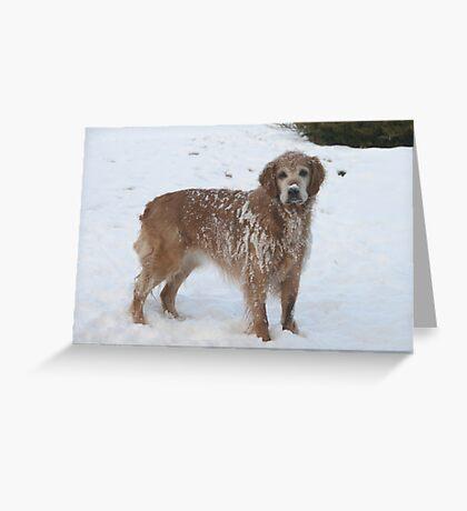 Snowy Winnie Dog Greeting Card