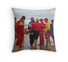 2011 Fairhaven (09) Throw Pillow