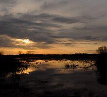 sunrise 13 by bozette