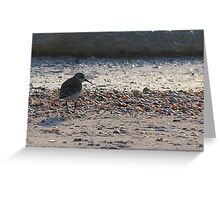 Is that thing on - are you getting this? Greeting Card