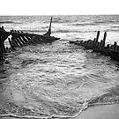 Rusty Ribs. by Gabrielle  Hope