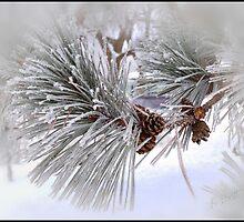 Winter Charm by KBritt
