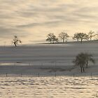 Snowy mountain by eddiebotha