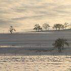 Snowy mountain by eddiebotha
