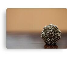 Magnet Balls...  Canvas Print