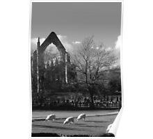 rufford abbey,nottinghamshire,near sherwood forest Poster