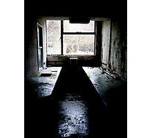 The Lab ~ Buckston Browne Farm Photographic Print