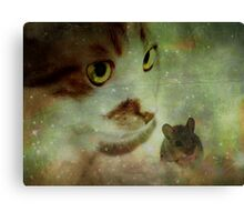 Cat and mouse games... Canvas Print