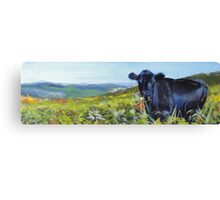 A Lunch Interrupted - Painting of a Dexter Cow Canvas Print