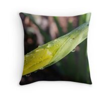 Oy Vey! So, When Will I Be A Daffy ?? Throw Pillow
