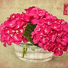 Flower Postcard by Leslie Nicole