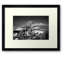 Mist and Ice (mono) Framed Print