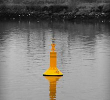 Its a Buoy! by Chris Cardwell