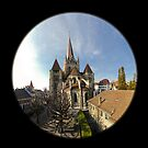 Cathedral of Lausanne - Panorama by Philippe Julien