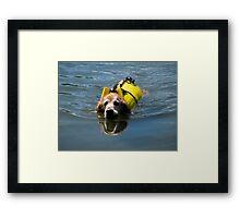 Winnie Swimming - O'Haver Lake, Colorado Framed Print