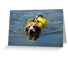 Winnie Swimming - O'Haver Lake, Colorado Greeting Card