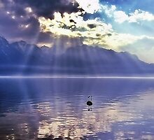 Sunbeams Over Lake Geneva by Aj Finan