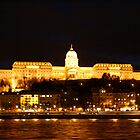 Buda Castle At Night - Budapest, Hungary by Cari Graves