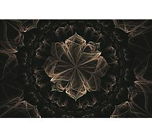 Ornate Blossom Photographic Print