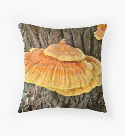 Sulpher Shelf - Laetiporus sulphureus cincinnatus Throw Pillow