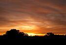 Armidale Sunrise by Odille Esmonde-Morgan