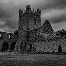 cistercian by dawn m. armfield