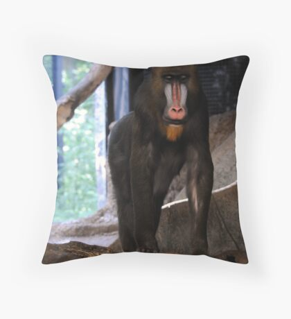 Male Mandrill Throw Pillow