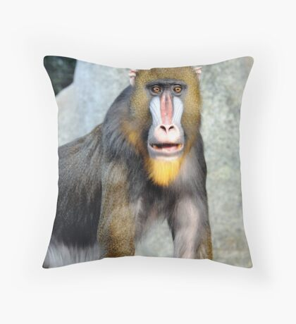 Male Mandrill Close Throw Pillow