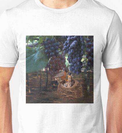 VINEYARD & ROBIN FEEDING BABIES GRAPES-PILLOWS-TOTE BAG-JOURNAL-NOTE BOOK- SCARF-ECT.. Unisex T-Shirt